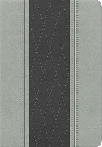 RVR 1960 Biblia Letra Grande Tamaño Manual, gris claro/gris carbón símil piel (Spanish Edition)