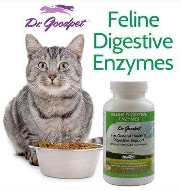 Dr-Goodpet-Feline-Digestive-Enzymes