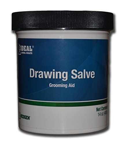 squire-ichthammol-drawing-salve-grooming-aid