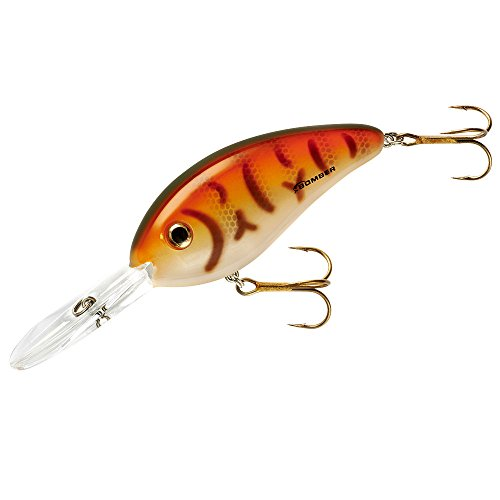 - Bomber Fat Free Shad Tiger Perch