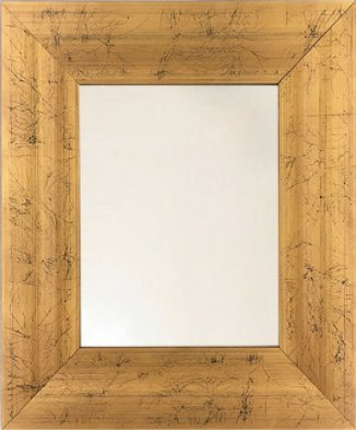 Amazon.com: Gold Picture Frame | Sizes: (13.5 x 15.5)(16.5 x 19.5 ...