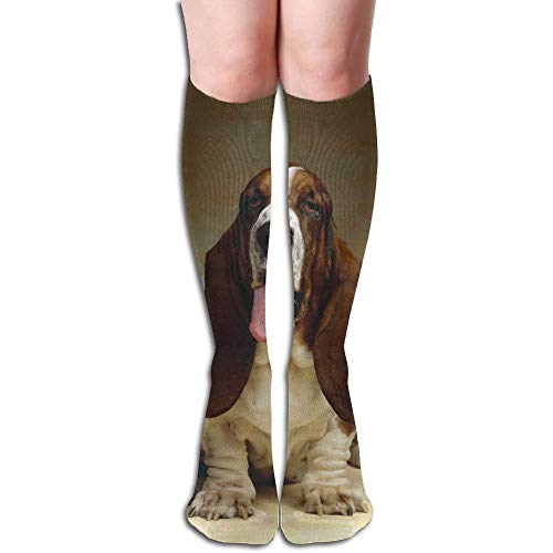 Tube High Keen Sock Boots Crew Basset Hound Compression Socks Long Sport Stockings by Curitis