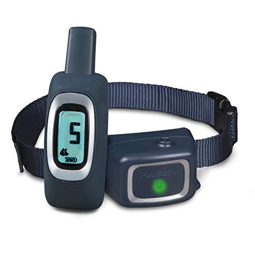 PetSafe Remote Spray Trainer, Training Collar and Remote for Dogs 8 lb. and Up, Water Resistant with Citronella Spray ()