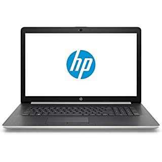 "HP 17 Business Laptop - Linux Mint Cinnamon - Intel Quad-Core i5-8265U, 8GB RAM, 1TB SSD, 17.3"" Inch HD+ (1600x900) Display, SD Card Reader, DVD+-RW Burner"