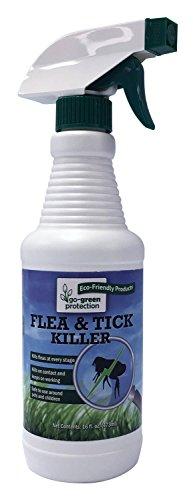 Non Toxic Flea - Natural 2-in-1 Flea and Tick Killer AND Repellent by Go-Green   Aggressive, Non-Toxic, Effective - Eco-Friendy Pest Control - 16 oz spray