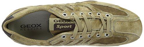 Beige Basse H Desertc5007 Geox Scarpe Ginnastica Snake Uomo da XRpx0qfZw