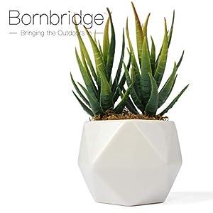 Bornbridge Artificial Succulent - Fake Succulent in Planter - Faux Succulent with Ceramic Geometric Planter - Aloe Succulent - Artificial Potted Plant (Single) 2