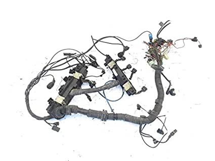 Amazon Com 2003 2005 Range Rover Engine Wire Harness Ysb001370 Oem