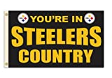 Fremont Die NFL Pittsburgh Steelers 3-by-5 Foot In Country Flag