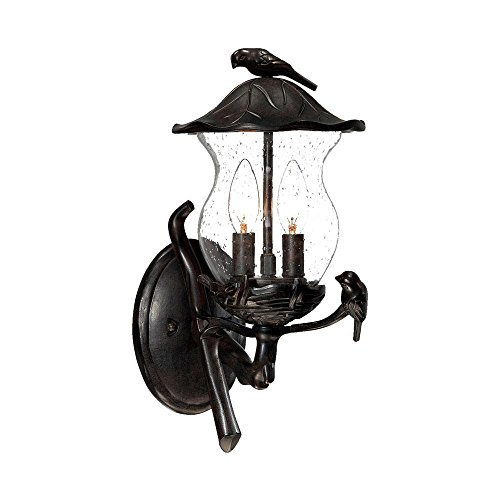 - Acclaim 7551BC/SD Avian Collection 2-Light Wall Mount Outdoor Light Fixture, Black Coral