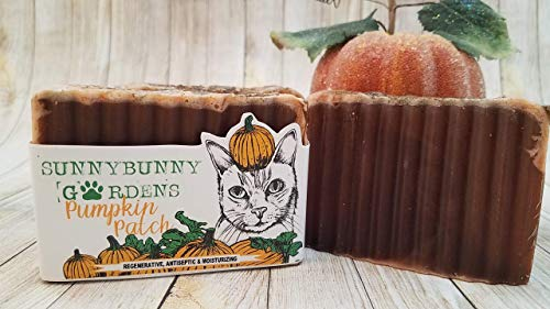 - Pumpkin Pie Soap | Handmade | Holiday