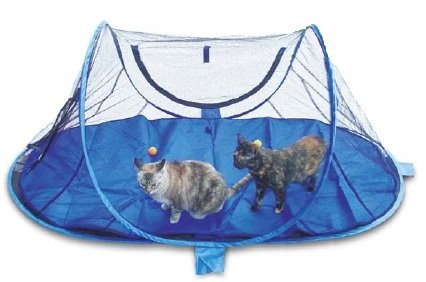 outdoor feline funhouse - 1