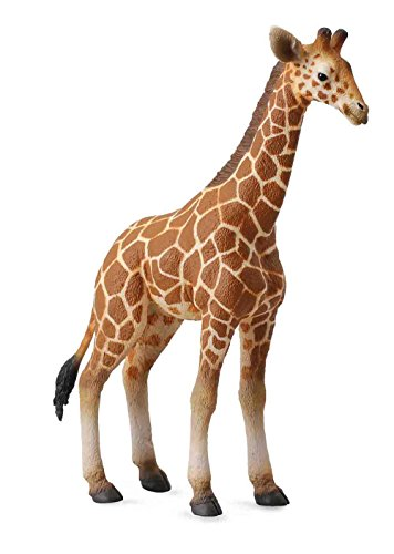 CollectA Wildlife Reticulated Giraffe Calf Toy Figure - Authentic Hand Painted (Life Like Giraffe)