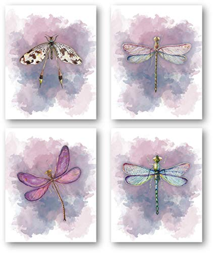 Dragonflies Art Beautiful Home Decor Prints - Set of 4 8 x 10 Unframed Prints - Beautiful Gift For Nature Lovers - Great Housewarming Gift for the Bathroom, Office, Bedroom, Girl's Room (Wall Dragonfly Art)