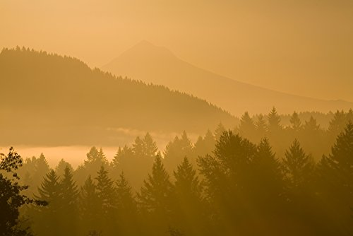 Posterazzi Mount Hood Oregon Usa; Silhouetted Landscape At Sunrise Poster Print (40 x 26)