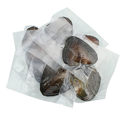 50PC Oysters with Pearls Inside, Freshwater Cultured Love Wish Pearl Oyster with Mixed Colors (7-8mm) by COOCLE (Image #4)