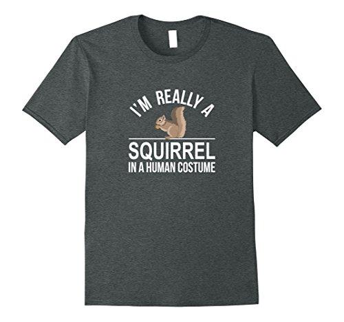 Mens I'm Really a Squirrel - In a Human Costume - T-shirt 2XL Dark (Grey Squirrel Costume)