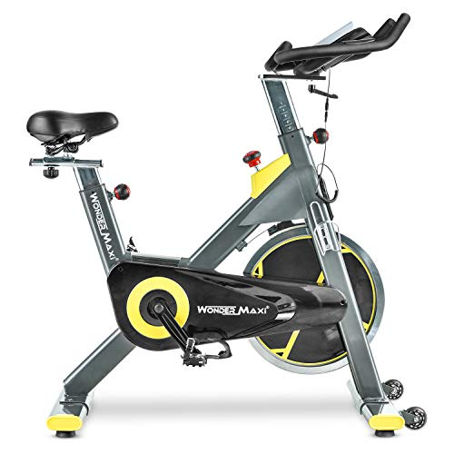 Stationary Exercise Bike with 45Lbs Flywheel - Belt Drive Indoor Cycling Bike with Ipad Holder and LCD Monitor for Home Workout, 330 Lbs Weight Capacity Popular