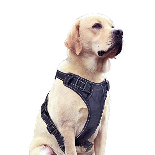 Ditto No-Pull Dog Harness, Adjustable Pet Harness Reflective Oxford Soft Vest with Metal Ring and Comfortable Handle for Small Medium Large Dogs Easy Control -M ()