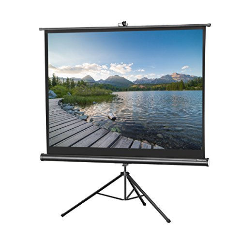 celexon 120'' Tripod Projector Screen Tripod Economy, 96 x 72 inches viewing area, 4:3 format, Black edition by Celexon