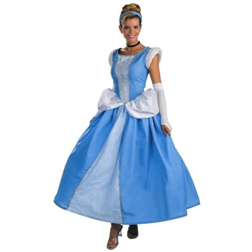 Disney Adult Cinderella Costume