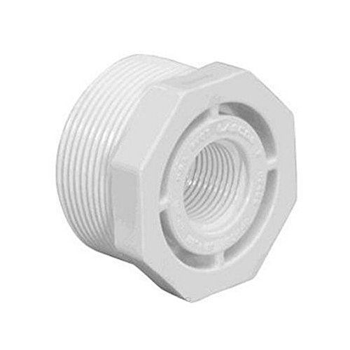 Schedule 40 MPT x FPT Threaded Reducer Bushing (Reducer Fpt)