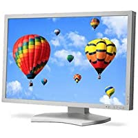 NEC MultiSync PA302W - LED monitor - 30 - 2560 x 1600 - IPS - 340 cd/m2 - 1000:1 - 6 ms - HDMI, DVI-D, DisplayPort, Mini DisplayPort - white