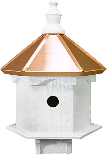 Review Amish Double Bluebird Birdhouse