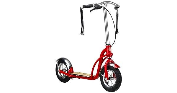 Amazon.com: Schwinn Roadster 10-pulgadas Scooter: Sports ...