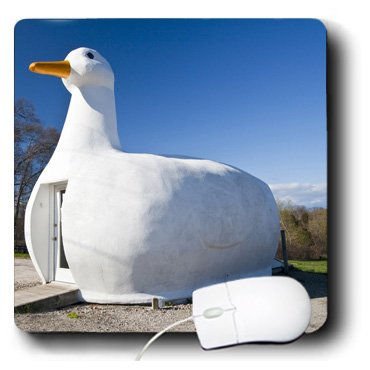 3dRose LLC 8 x 8 x 0.25 Inches Mouse Pad, New York, Long Island, Flanders, The Big Duck, Walter Bibikow (mp_93165_1)
