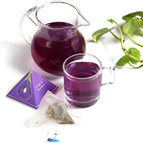 BLUE TEA - Purple Tea Spiced Lemon | Caffeine Free Herbal Tea for Weight Loss | Herbal Blend of Butterfly Pea Flower, Lemon ,Ginger (24 Cups, 12 Handcrafted Pyramid Tea)