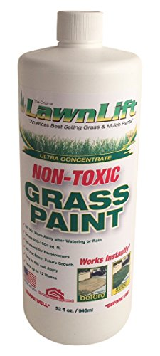 Lawn Paint Concentrated Lawn Paint (12 Units), 32 oz by Lawn Paint