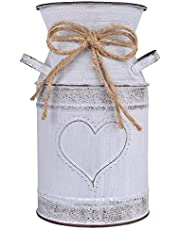 """HIDERLYS 7.5"""" High Decorative Vase with Unique Heart-Shaped and Rope Design, Galvanized Finish- Rustic Decorated for Living Room, Bedroom, Kitchen (Grey)"""