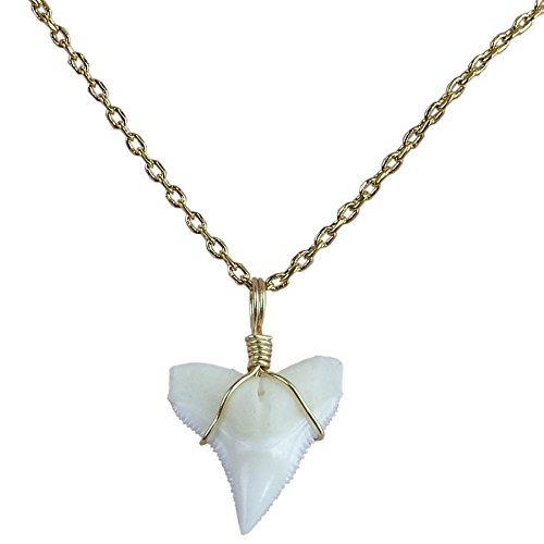 GemShark Real Shark Tooth Necklace Small Charm Pendant Gold 18K Plating Collarbone Chain (Surfer Shark Attack Costume)