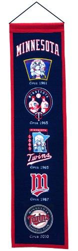 Minnesota Twins Wool 8