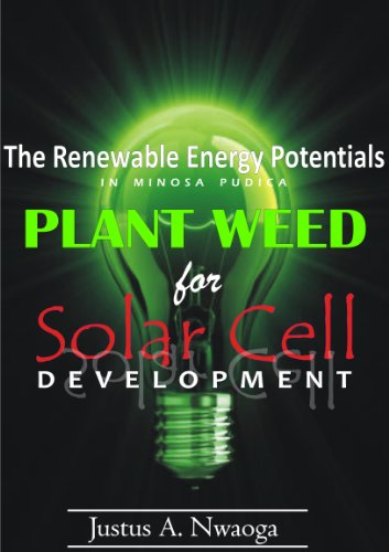 Image result for mimosa weed solar energy