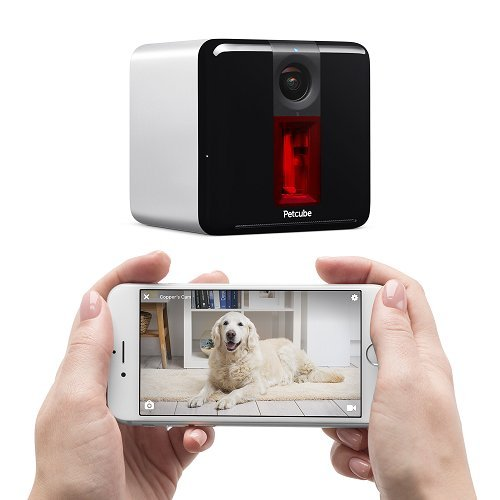Petcube Play: Pet Camera with 1080p Video, 2-Way Audio, Night...