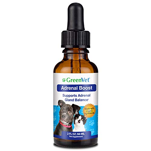 Green Vet Best Canine Cushings Drops - Premium Adrenal Support for Dogs - Herbal Dog Cushings Supplement for Overall Health and Wellbeing