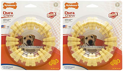 Nylabone Dura Chew Plus Textured Ring Dog Chew (Large - Pack of 2) by Nylabone (Image #1)