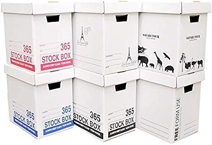 サイズ カラー ボックス