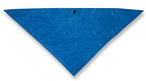 Frogg Toggs CD102 Chilly Dana Cooling Bandana,BLUE