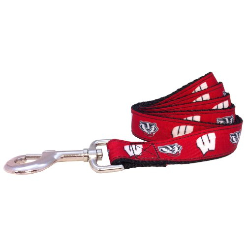 NCAA Wisconsin Badgers Collegiate Dog Leash (Large)