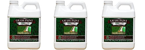 1,000 Sq. Ft. 4EverGreen Grass and Turf Paint (3-Pack)