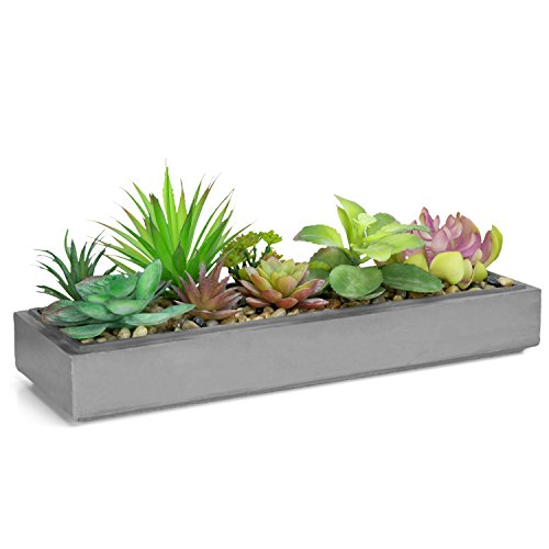 - Mixed Color Artificial Succulent Plant Arrangement in Modern 16-Inch Gray Clay Planter Tray