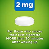 Amazon Basic Care Mini Nicotine Polacrilex