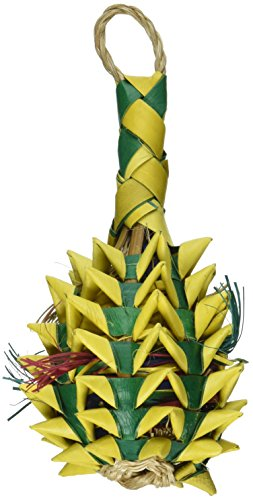 Planet Pleasures Pineapple Foraging Toy, Small