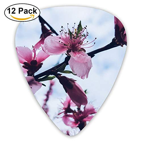 (Anticso Custom Guitar Picks, Aroma Aromatic Bloom Flowers Floral Guitar Pick,Jewelry Gift For Guitar Lover,12 Pack)