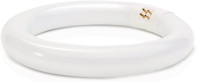Philips 391169 Circline Fluorescent 22-Watt 8-Inch T9 Cool White Light Bulb (6 Pack)