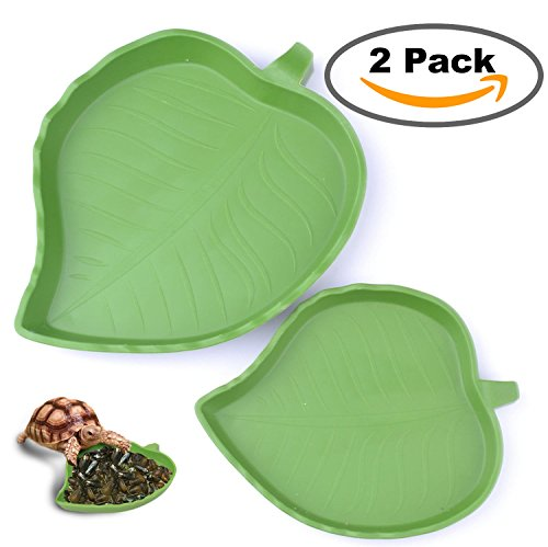 2 pack Leaf Reptile Food and Water Bowl for Pet Aquarium Ornament Terrarium Dish Plate Lizards Tortoises or Small Reptiles (Dish Tortoise)