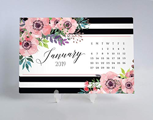 2019 Desk Calendar Planner Cards Keep Meeting Schedule Dates Event Notes on Back Beautiful Pink Floral Office Gift for Woman Teacher Coworker Job Manager 4 x 6 inches with Clear Acrylic Stand - Elise